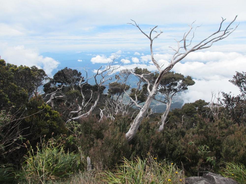 2 Day Hike Mount Kinabalu Malaysia Low's Peak - View