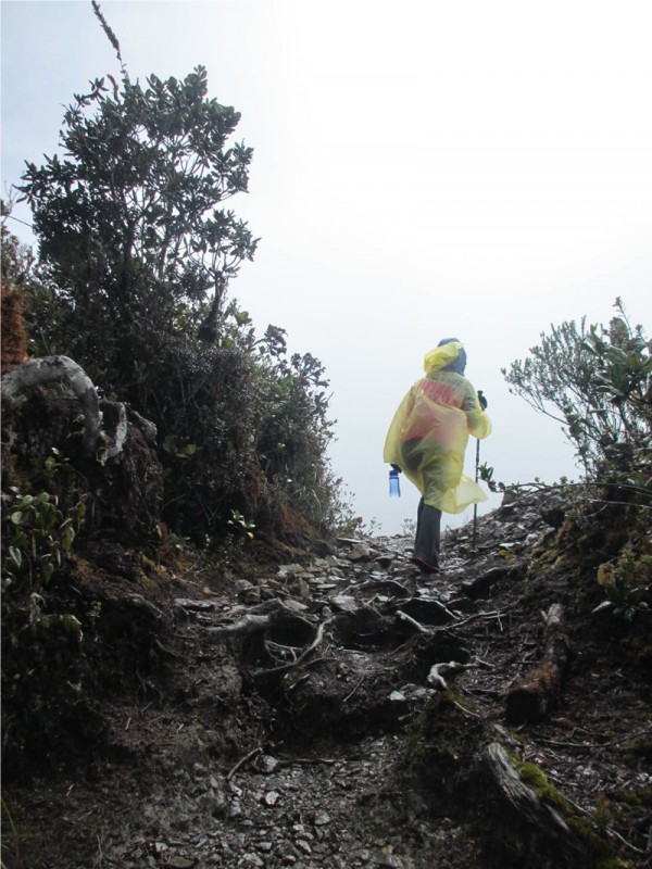 2 Day Hike Mount Kinabalu Malaysia Low's Peak - Weather