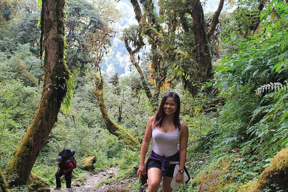 Ghorepani-Poonhill-Trek-Forest