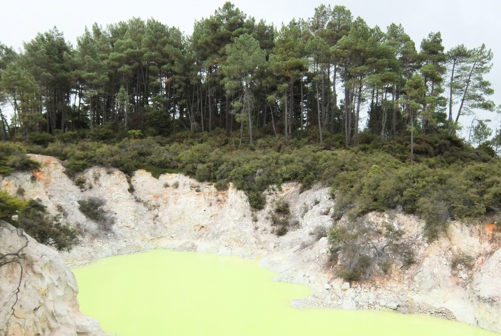 Wai-O-Tapu Thermal Wonderland Rotorua New Zealand Devil's Bath