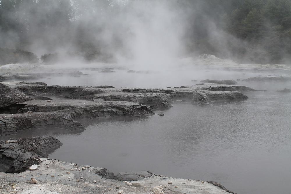 Hells Gate Rotorua Geothermal Park Mud Bath Sulphur Spa New Zealand Mud Pools