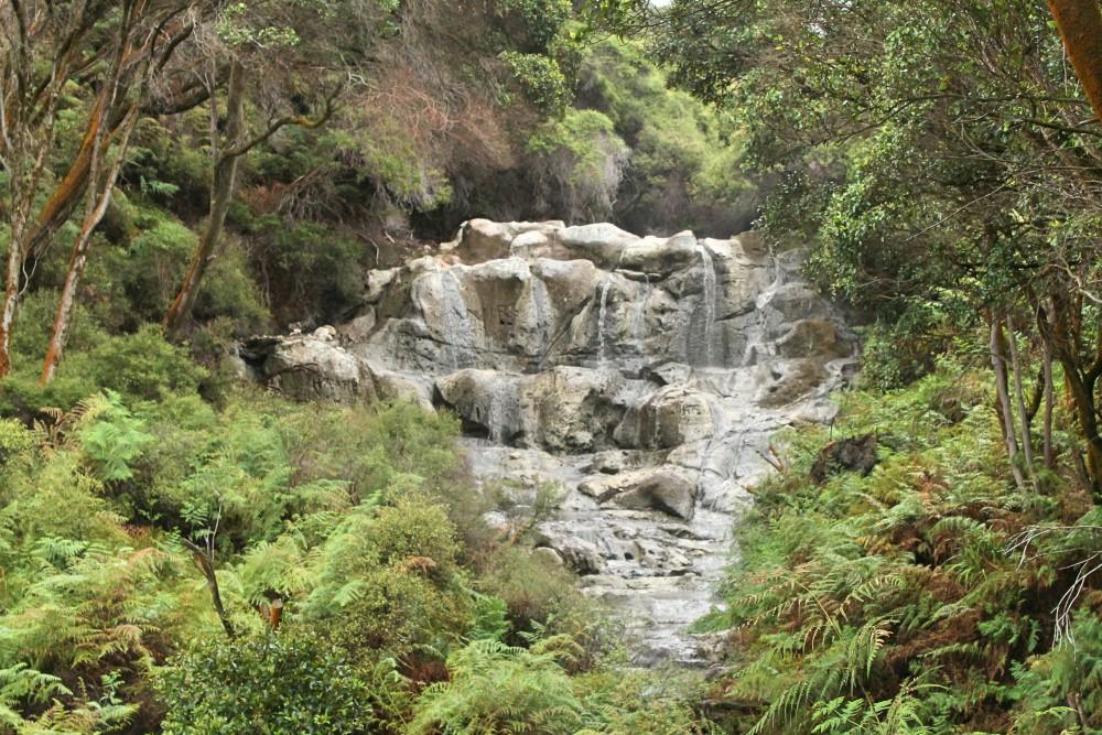 Hells Gate Rotorua Geothermal Park Mud Bath Sulphur Spa New Zealand Kakahi Falls