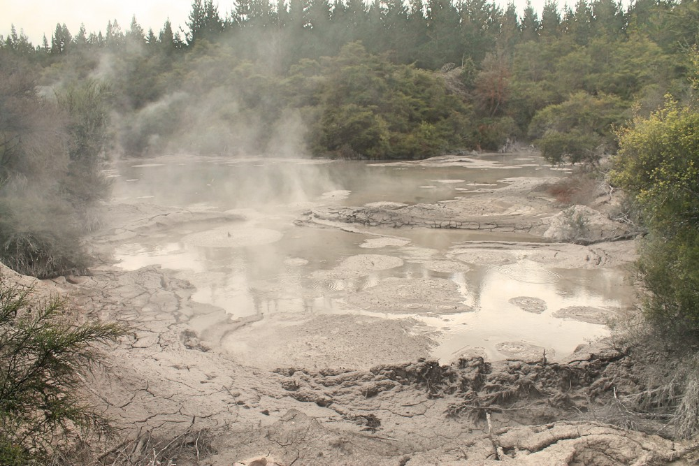 Wai-O-Tapu Thermal Wonderland Rotorua New Zealand Mud Pools