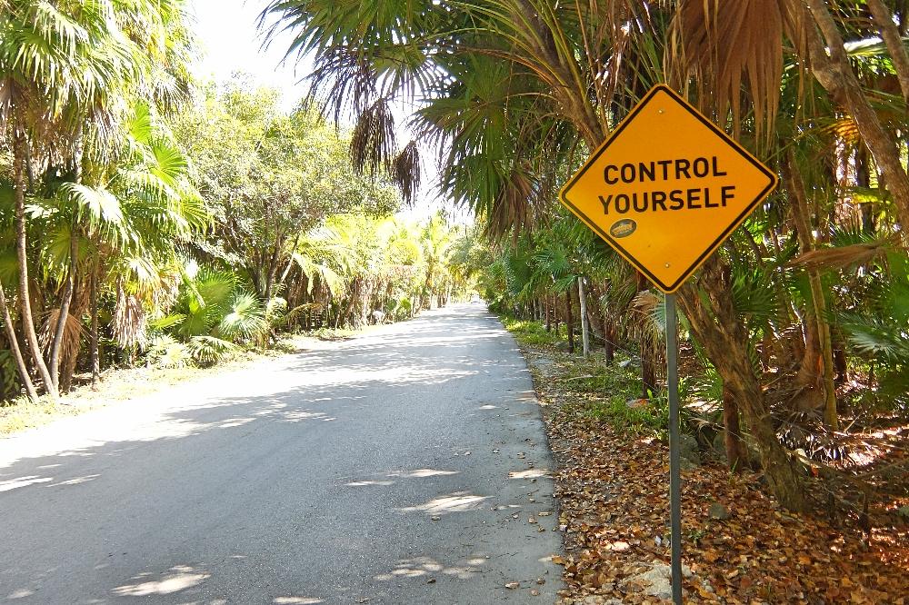 Beaches Ruins Cenotes Biking in Tulum - Tulum Ruins - Route