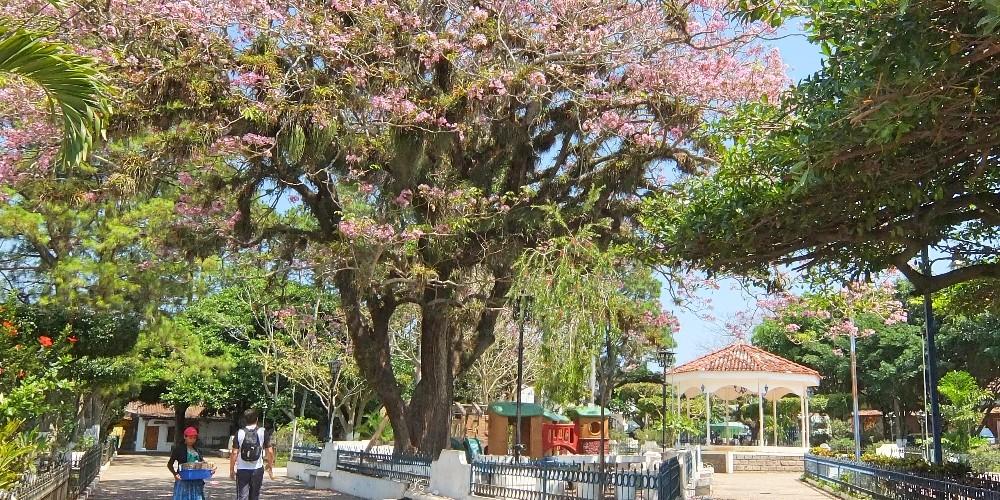Ruta de las Flores El Salvador - Route of Flowers - Coffee Towns - Ataco