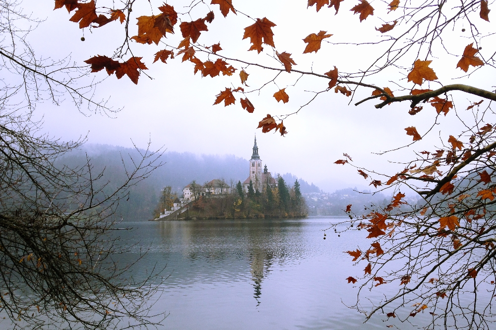 A Fairy Tale in Europe, One Week in Slovenia - Church in Lake Bled Island