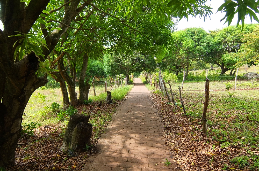 Budget Carribbean - Little Corn Island Nicaragua - Beach Trail