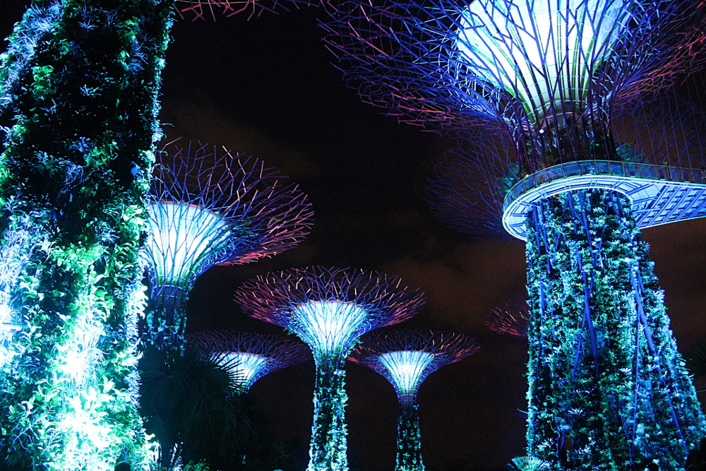 Romantic Date Ideas Singapore - Gardens by the Bay