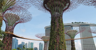 Gardens by the Bay - Best Free Things to Do in Singapore