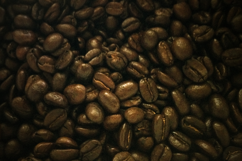 Coffee Tour Salento Colombia - Roasted Coffee Beans