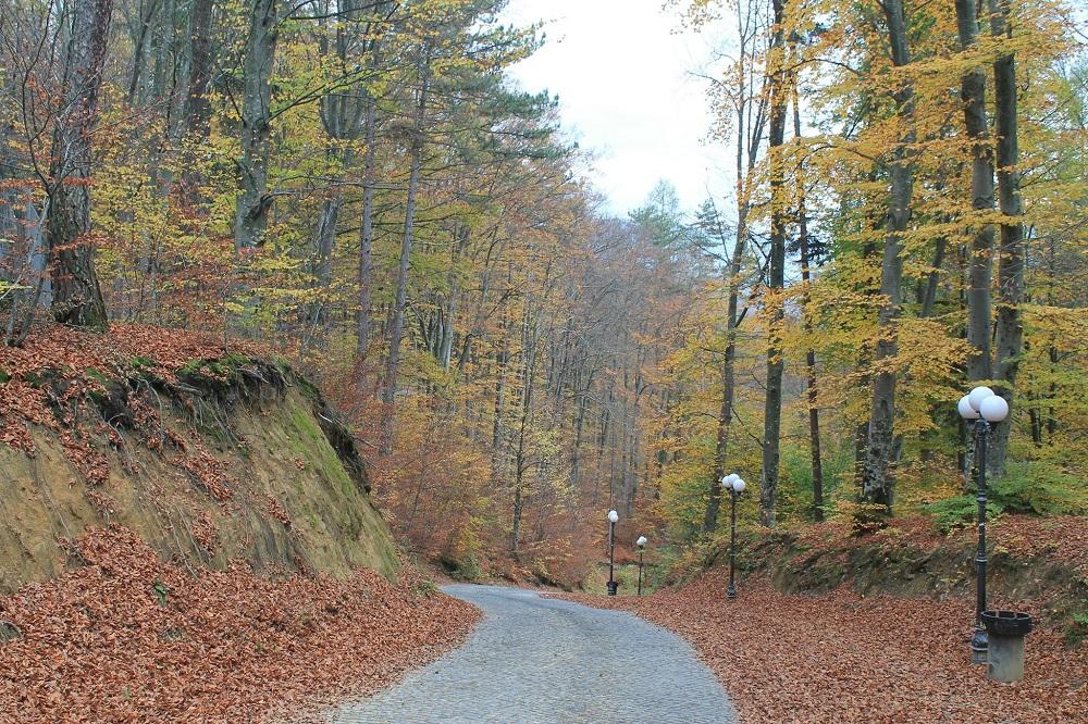 Best Road Photos around the World - Rasnov Romania