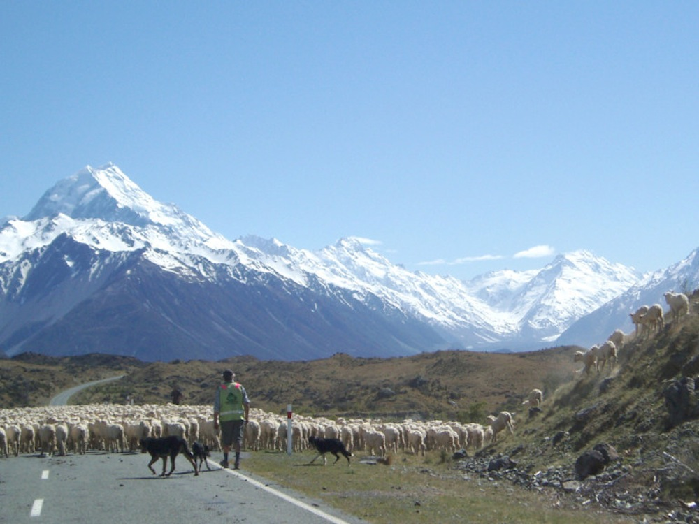 Best Road Photos around the World - Mount Cook New Zealand