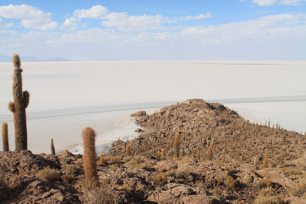 3 Day Salt Flat Tour Salar de Uyuni Bolivia - Isla Incahuasi Fish Island