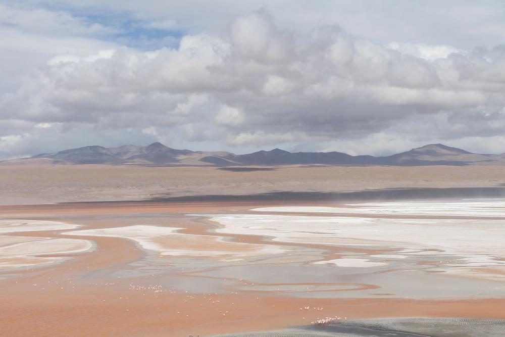 3 Day Slat Flat Tour Salar de Uyuni Bolivia - Laguna Colorada