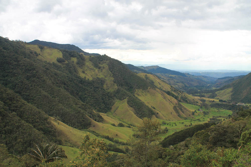 Day Hike to Valle de Cocora Colombia Salento - Trail Hill Top View