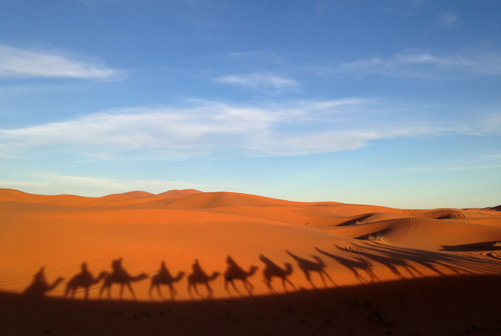 Ride a Camel - One of the Cool Things to Do in Morocco