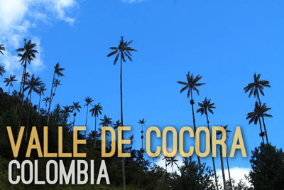 Valle de Cocora in Colombia - Natural Wonders