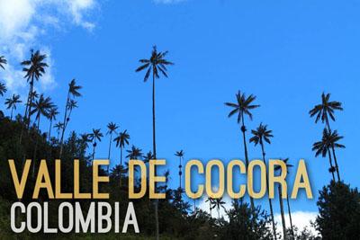 Valle de Cocora in Colombia - Natural Wonders