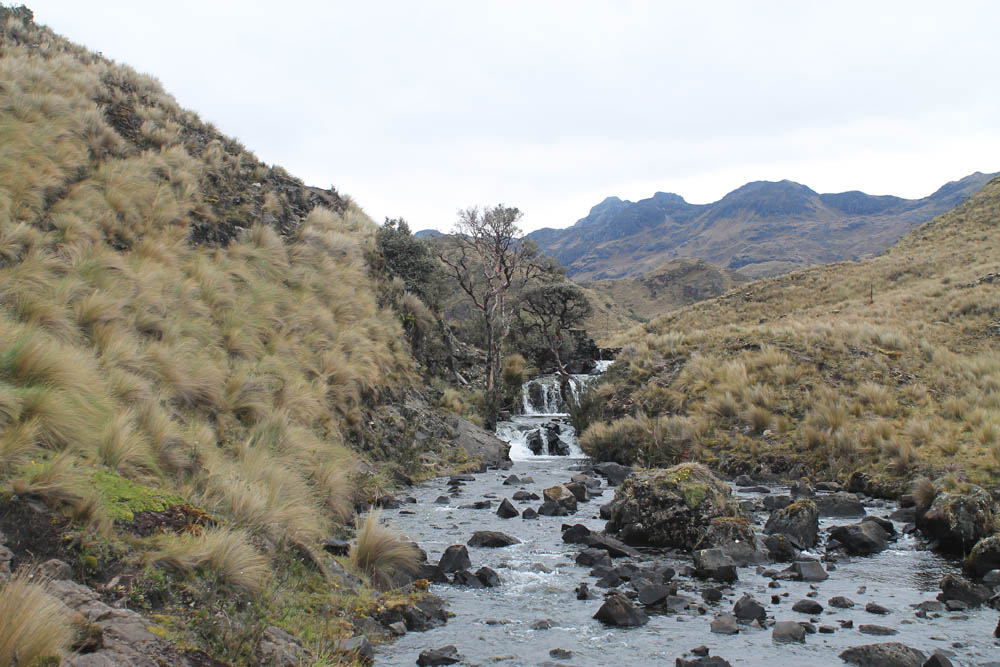 best-day-hikes-in-south-america-cajas-national-park-ecuador-cuenca