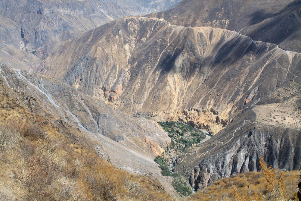 best-day-hikes-in-south-america-colca-canyon-peru-oasis