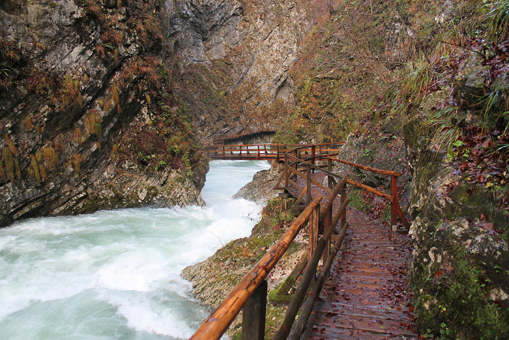 Vintgar Gorge - Best Things to Do in Bled Slovenia