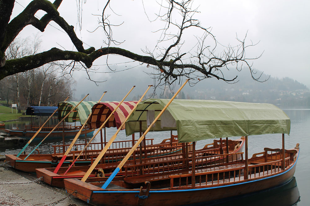 Boat Ride to Lake Bled - Best Things to Do in Bled Slovenia