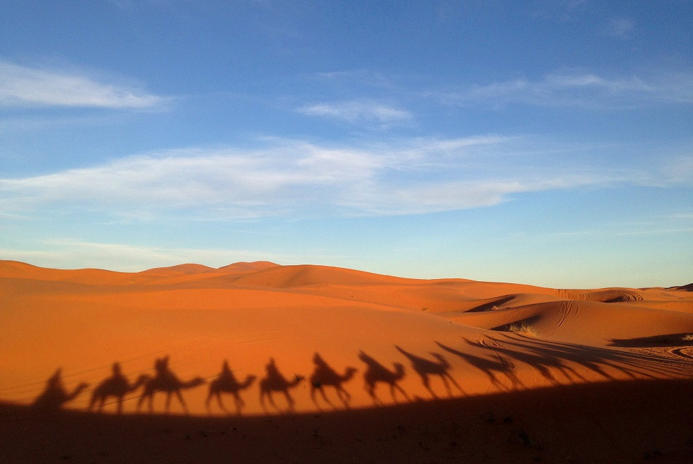Sunset Camel Trek - Couples Travel Bucket List - Top Experiences to Share with Your Partner