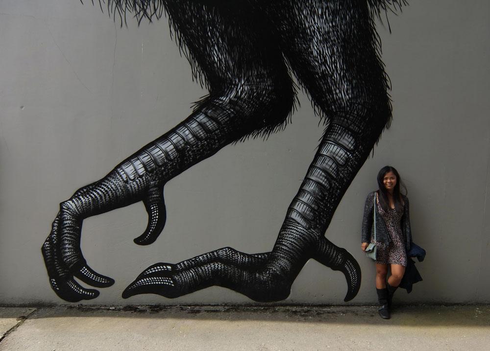 Dunedin Street Art Trail - New Zealand - Moa Bird
