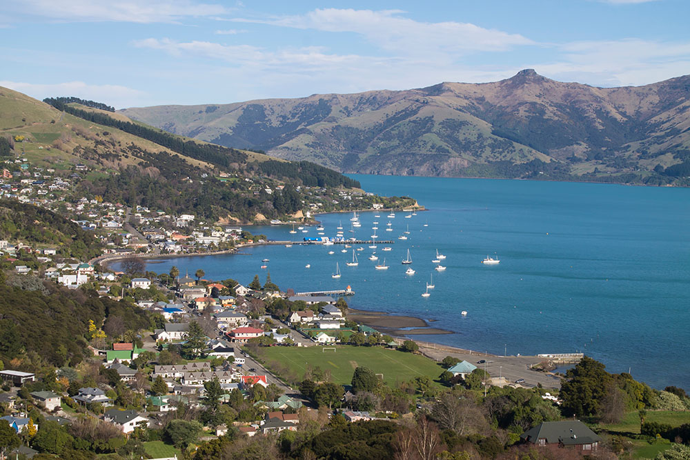 Akaroa Dolphins - Akaroa Harbour Nature Cruise: A Remarkable Experience in Akaroa, New Zealand | Mismatched Passports
