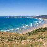 15 Amazing Things to Do in the Catlins, New Zealand: A First Timer's Guide