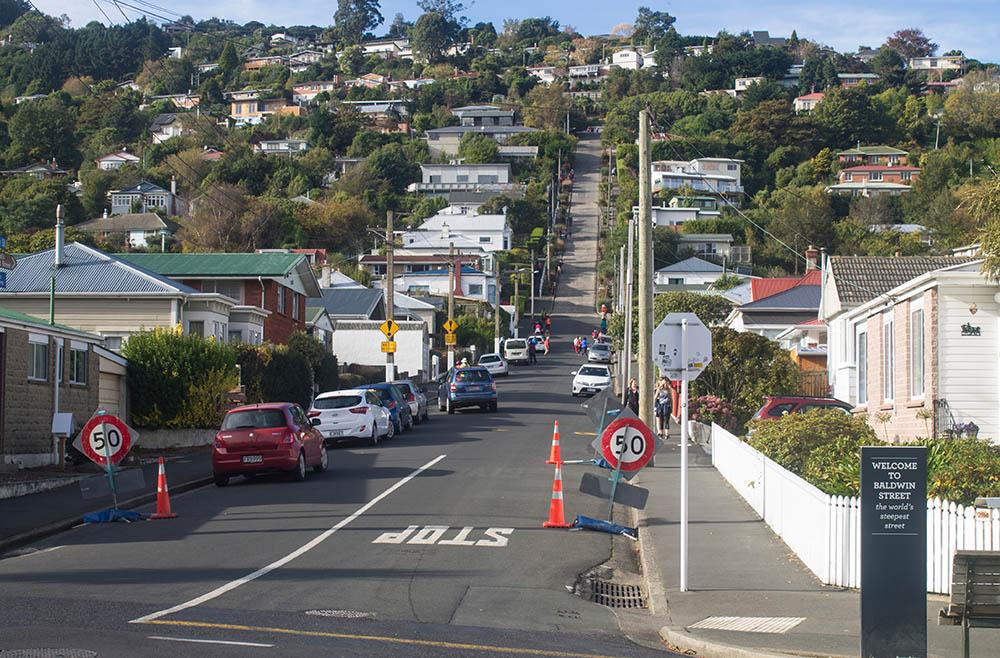 baldwin-street-dunedin-steepest-street-new-zealand