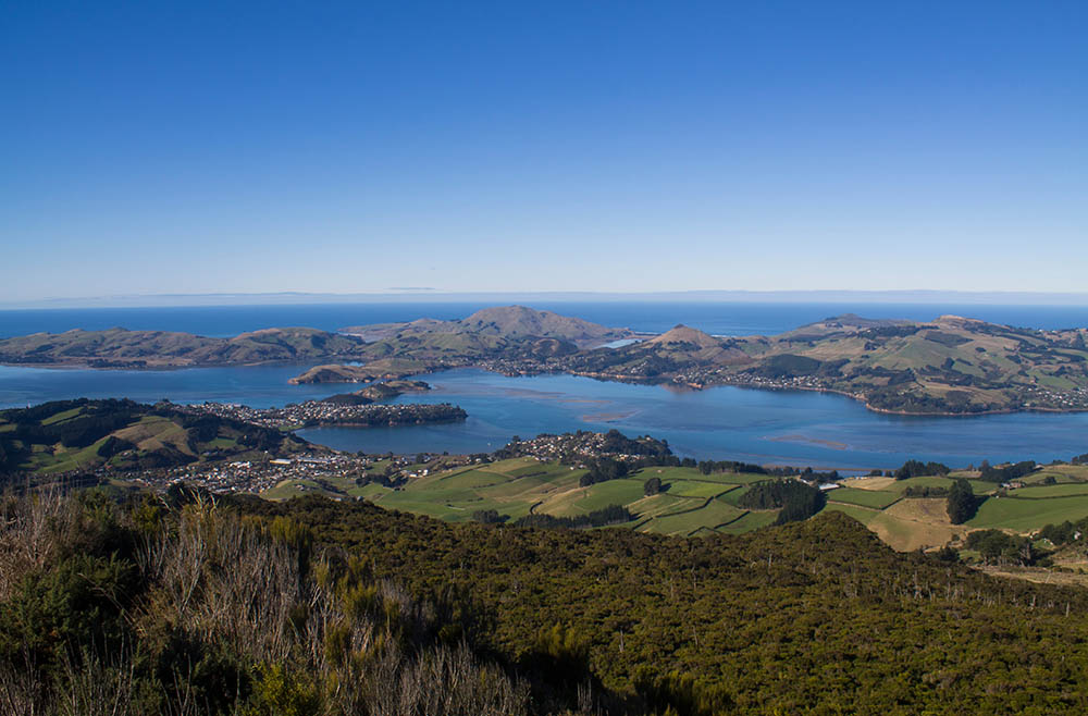 otago-peninsula-dunedin-new-zealand