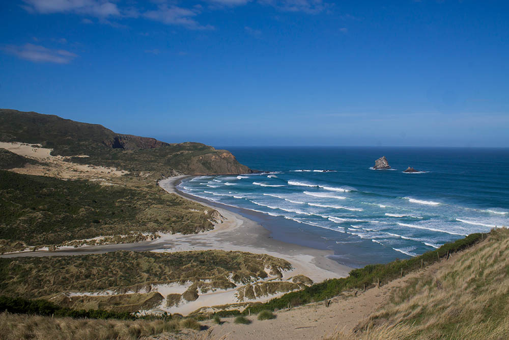 sandfly-bay-beach-dunedin-new-zealand