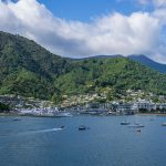 12 Cool Things to Do in Picton, New Zealand