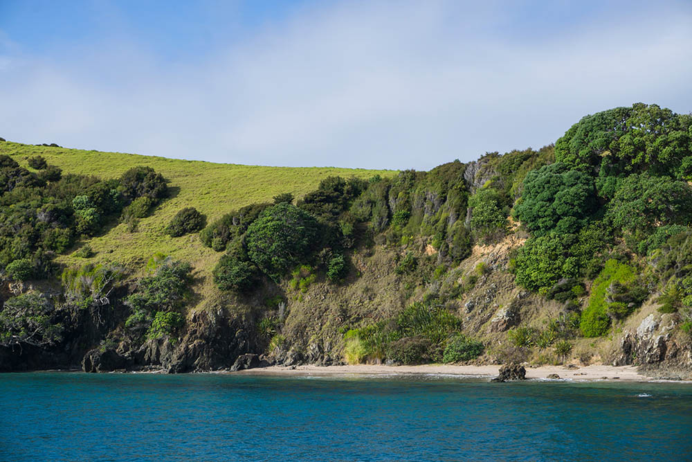Bay of Islands Tour, New Zealand